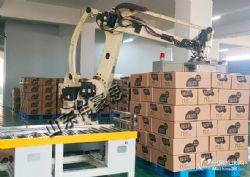 供应纸箱机器人码垛夹具 自动装箱码垛设备
