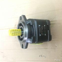 供应HG2-160-01R-VPC齿轮泵