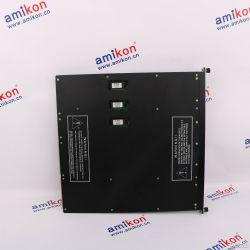 M-SYSTEM模块卡件 M5VF-AA-R