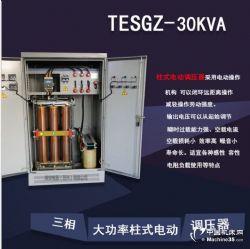 美田TEDGZ、TESGZ单、三相大功率电动柱式调压器