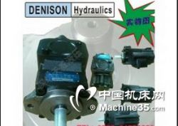 T6DC-045-012-1R01-A1法国丹尼逊定子泵